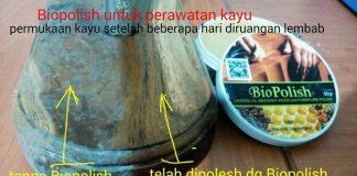 Biopolish-beeswex-linsed-oil